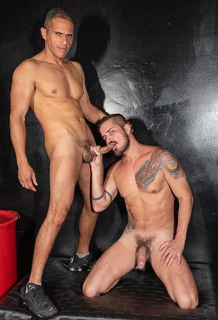 Flip and Lick Latin Boys